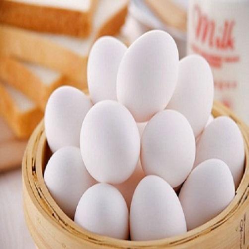 Trứng Gà Ác Lộn 1
