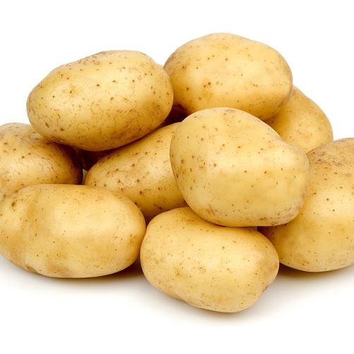 Khoai tây vàng Đà Lạt 1