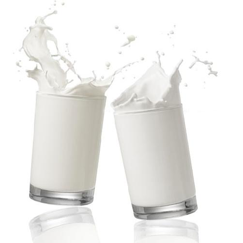 Sữa bò tươi thanh trùng không đường cuchi milk