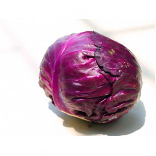 Bắp cải tím đà lạt…